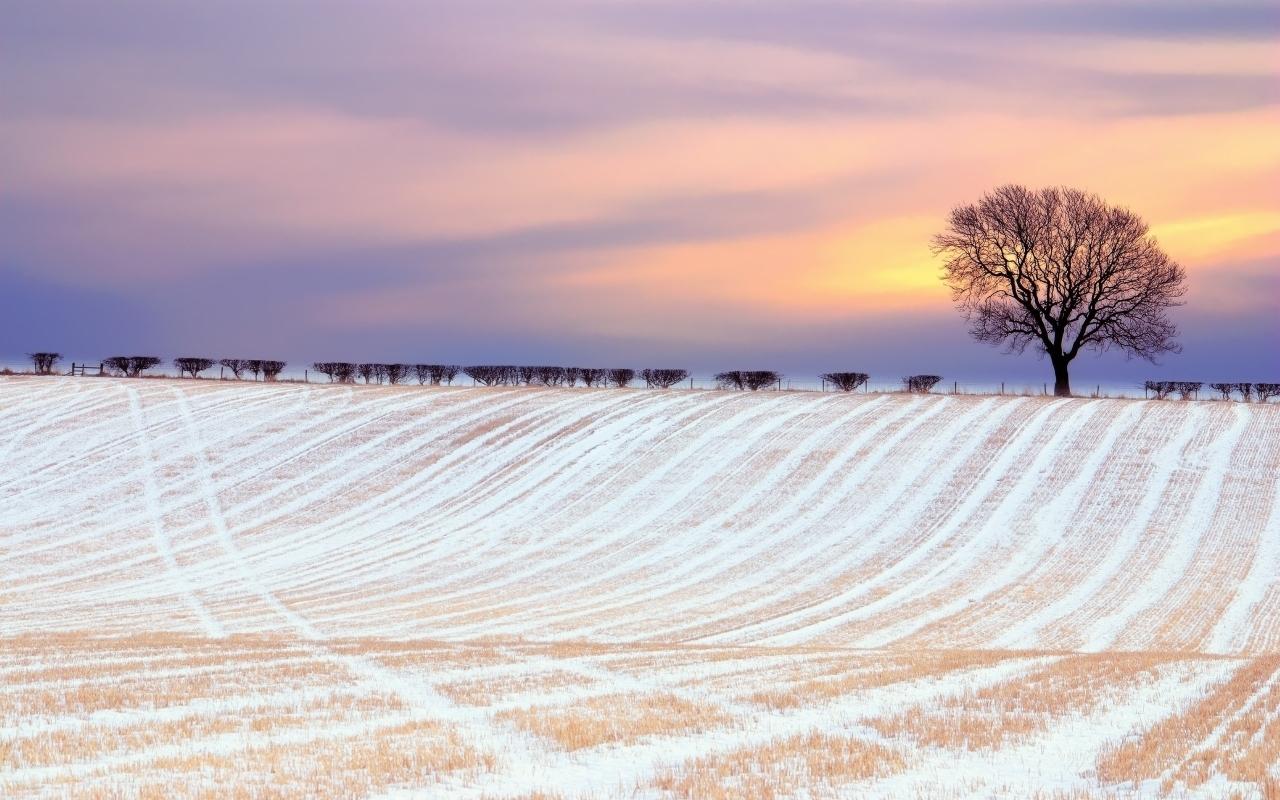 Paisajes increíbles en nieve - 1280x800
