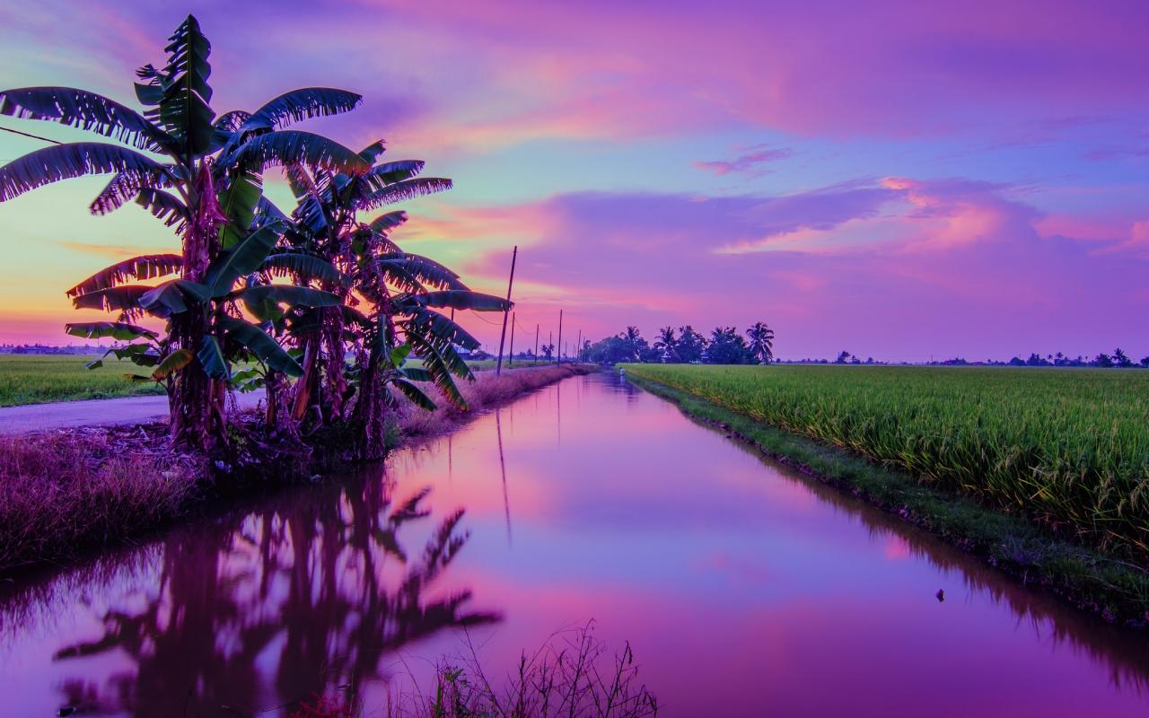 Puesta de Sol color Púrpura - 1280x800