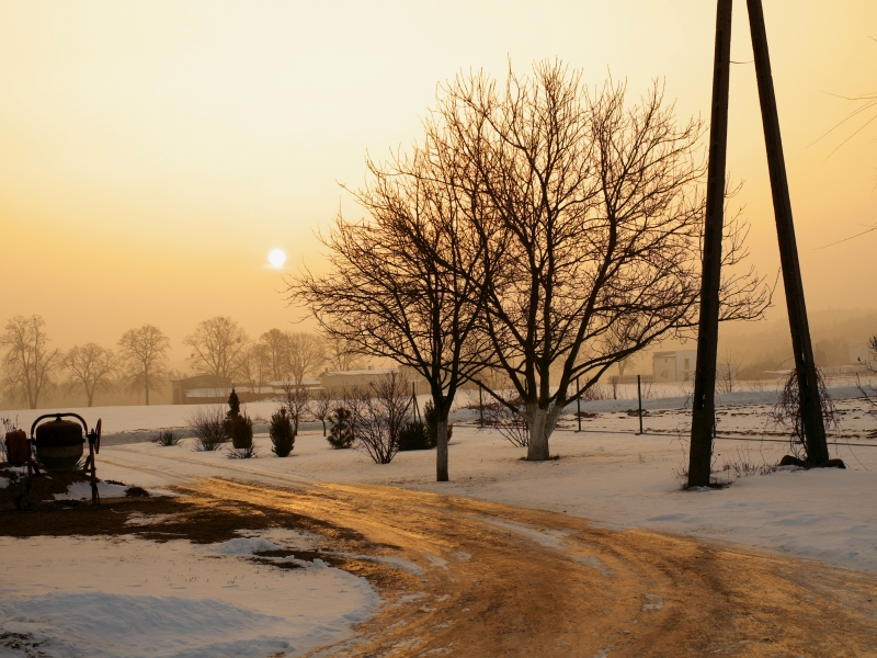 Una fotografía en la mañana - 800x600