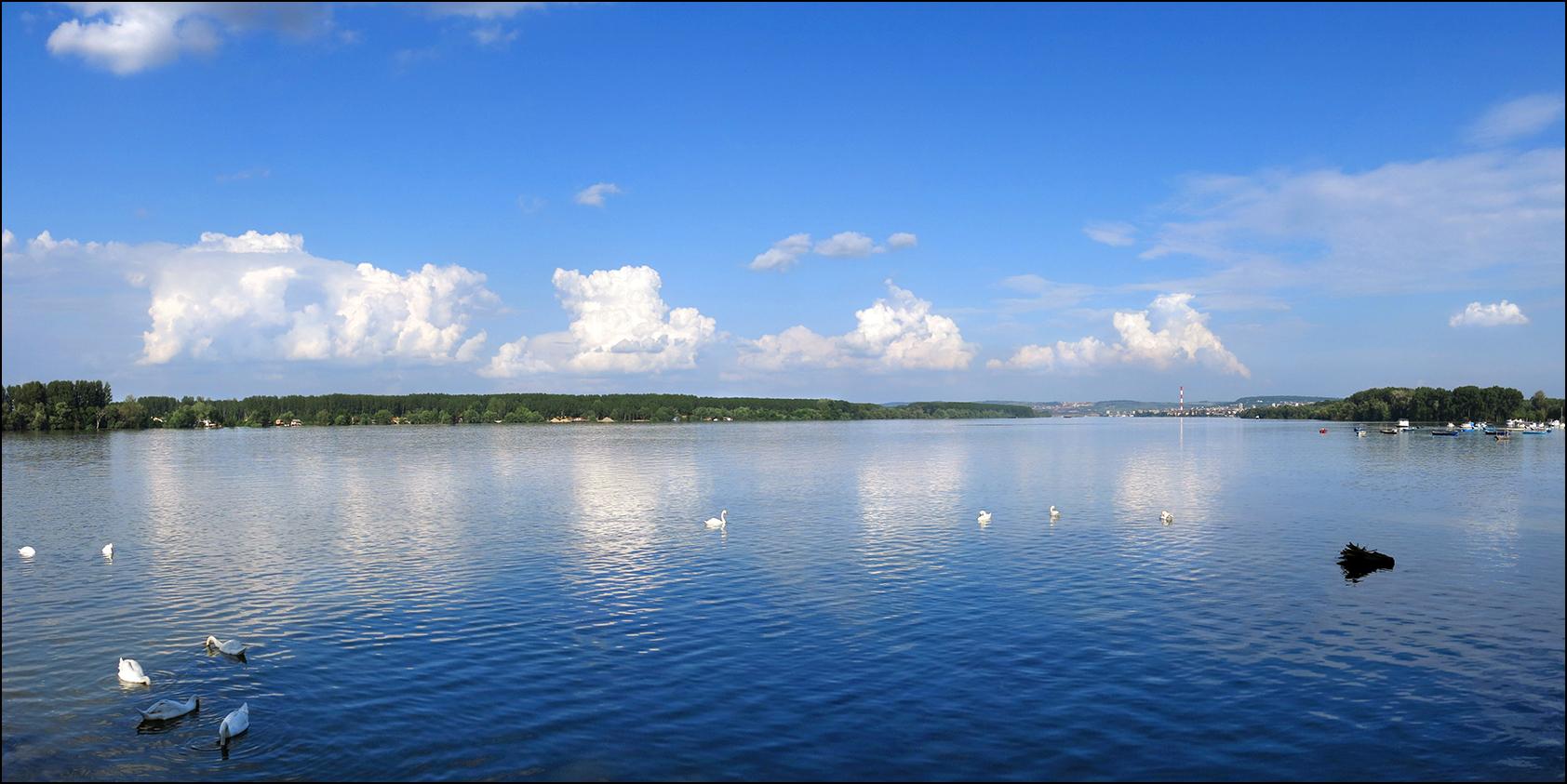 Swollen Danube - 1684x843