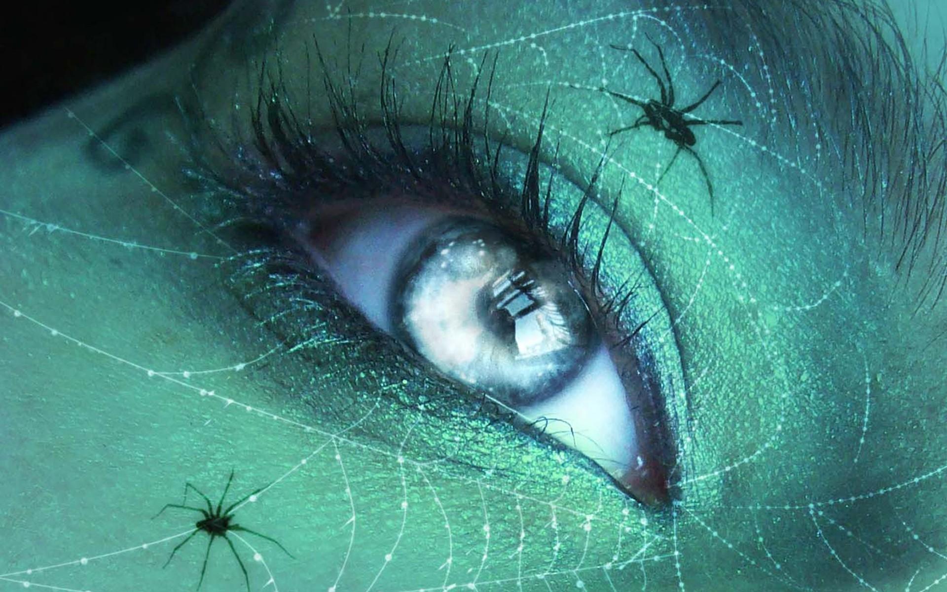 Tatuajes de arañas - 1920x1200