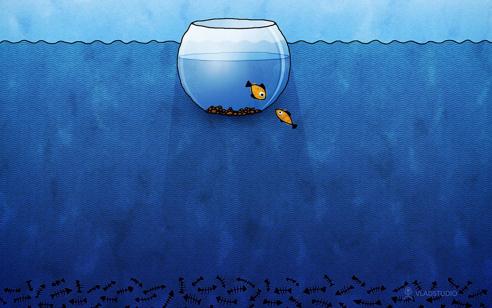 Un acuario en digital - 1680x1050