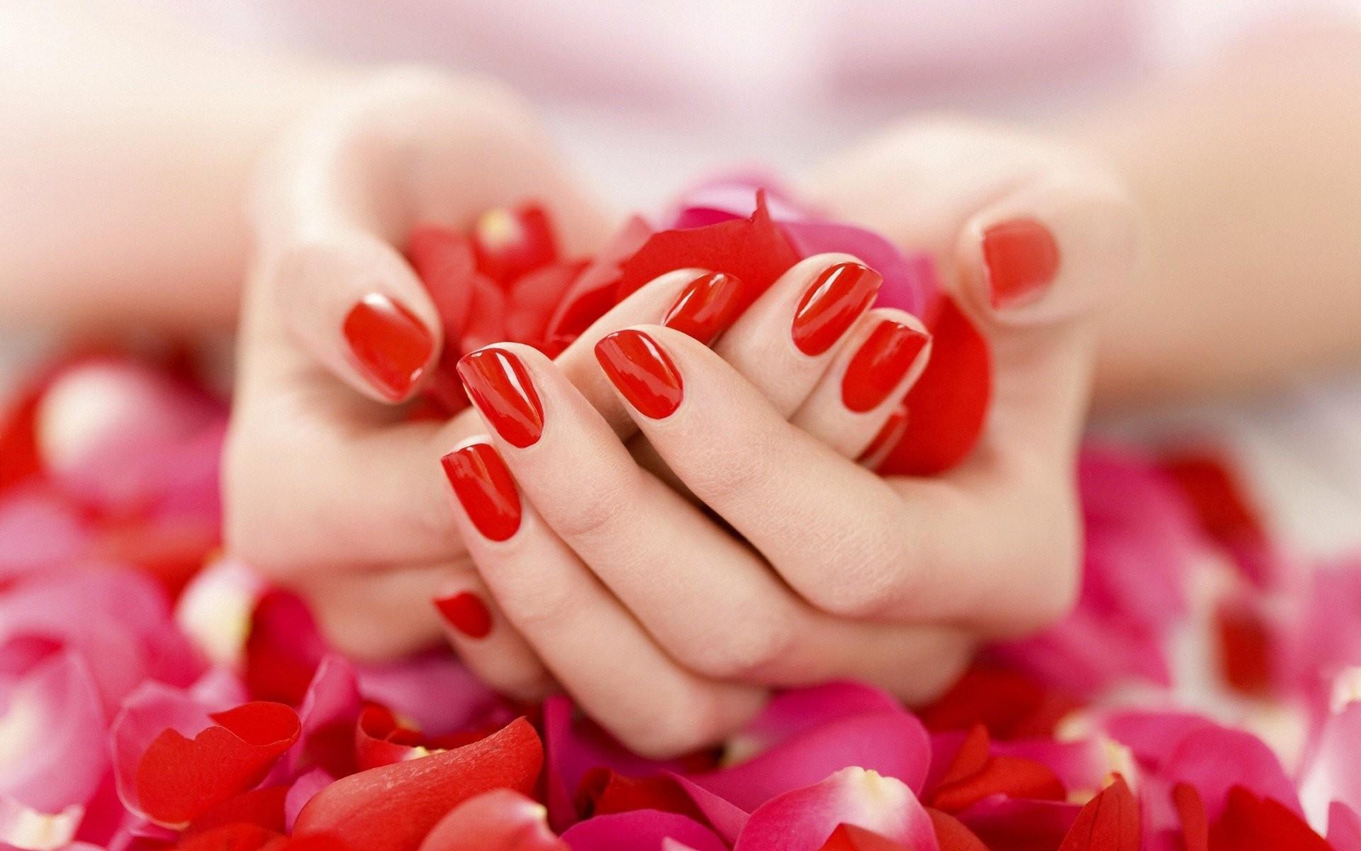 Uñas rojas y pétalos de rosas - 1920x1200