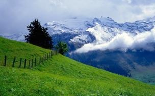 Paisaje verde y montañas