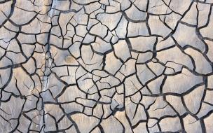 Textura de rocas