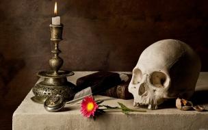 Un cráneo para estudio