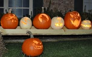 Calabazas reales por halloween