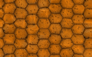 Textura de celdas de abejas