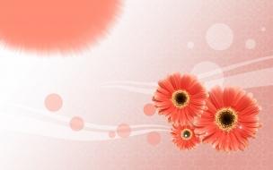 Tres flores bellas