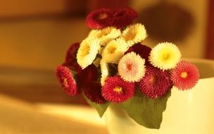 Adorno con flores rojas y blancas