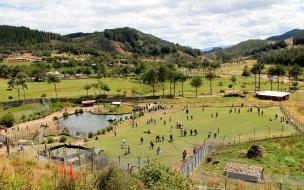 Granja Porcón en Cajamarca