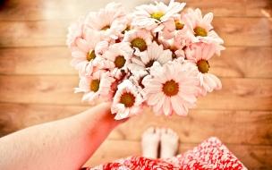 Hermosas flores rosadas