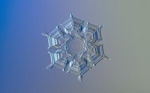 Un grano de nieve