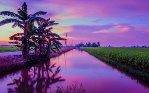 Puesta de Sol color Púrpura