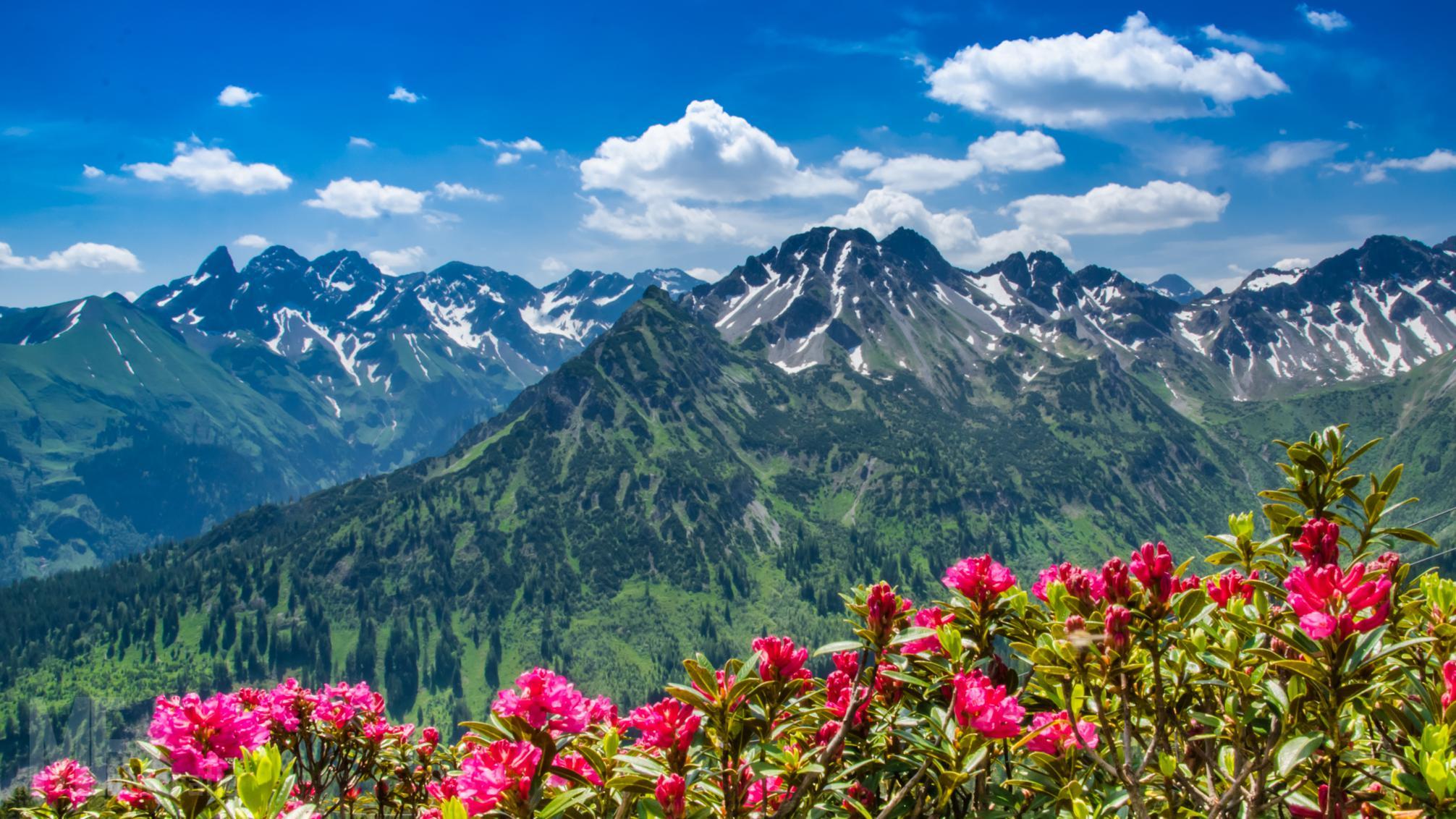 Bellas montañas - 2012x1132