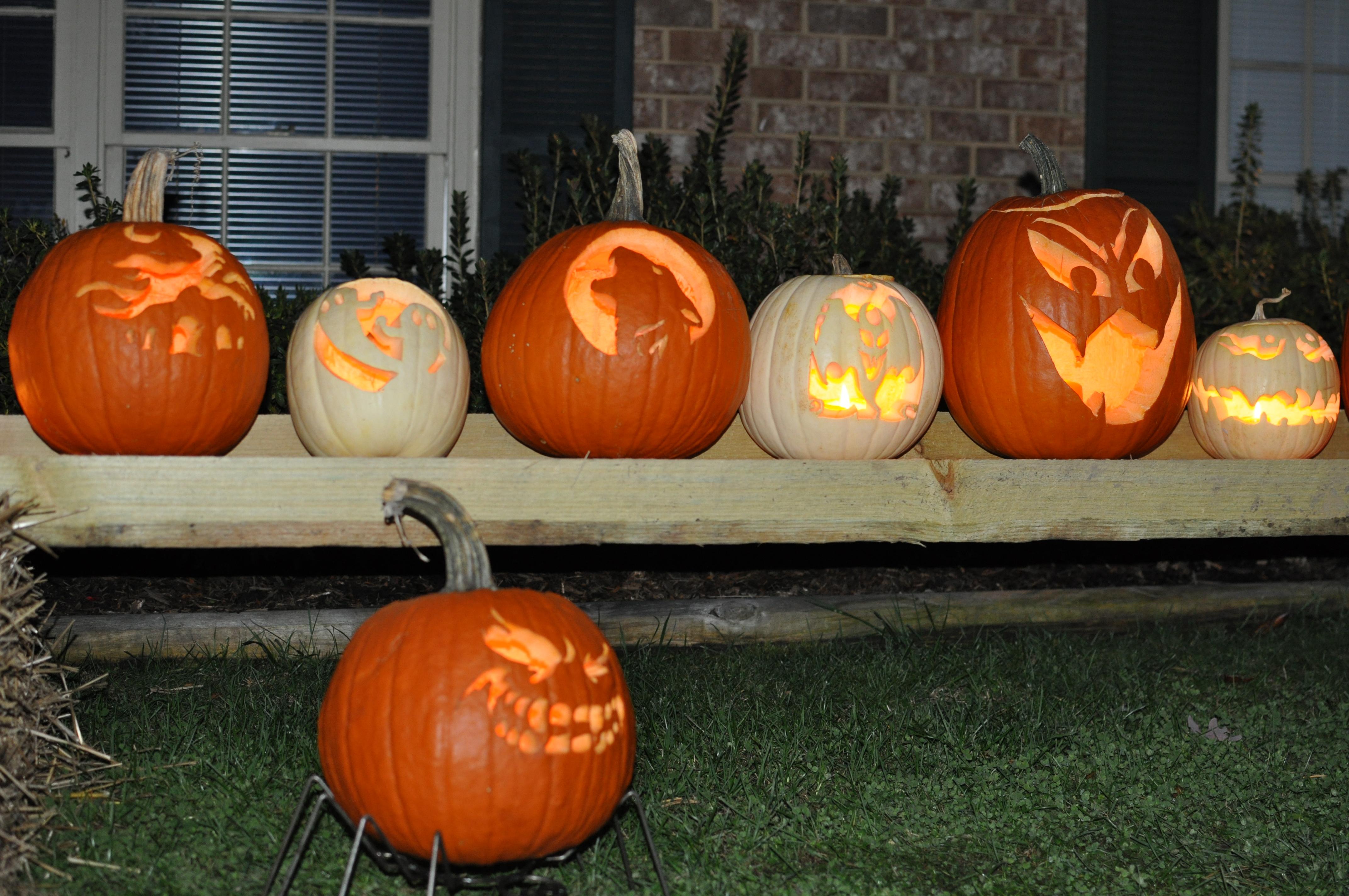 Calabazas reales por halloween - 4288x2848