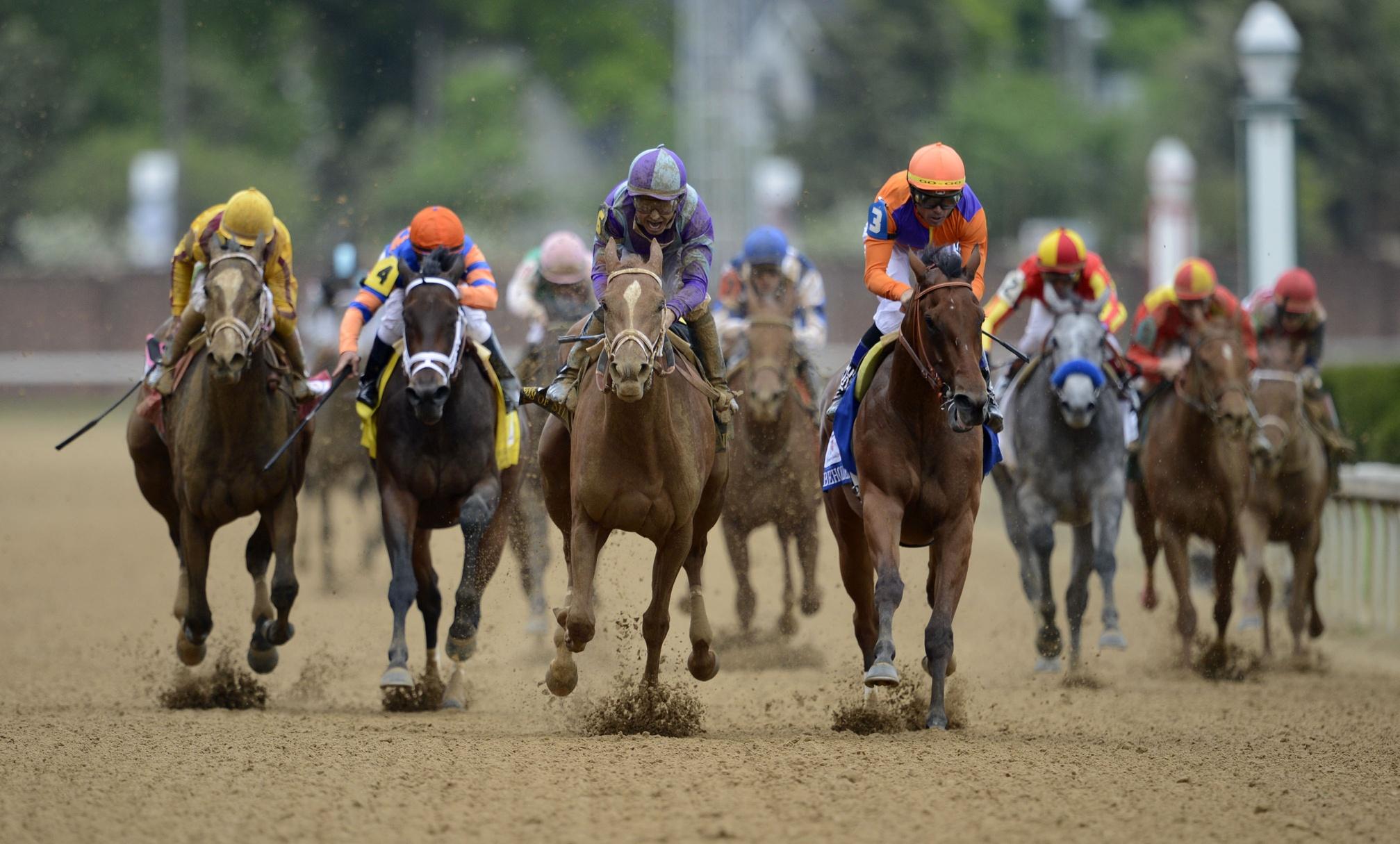 Carreras de caballos - 2015x1215