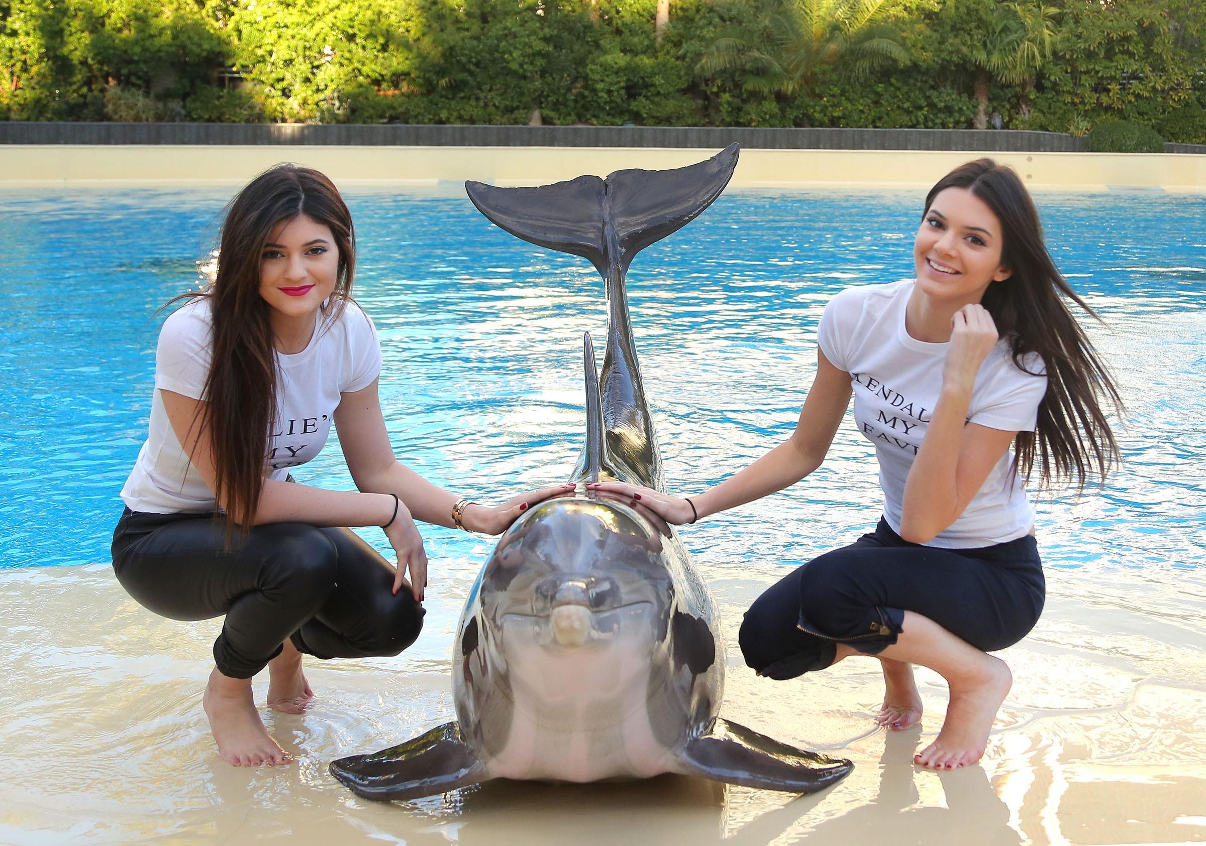 Chicas y un delfín - 2400x1685