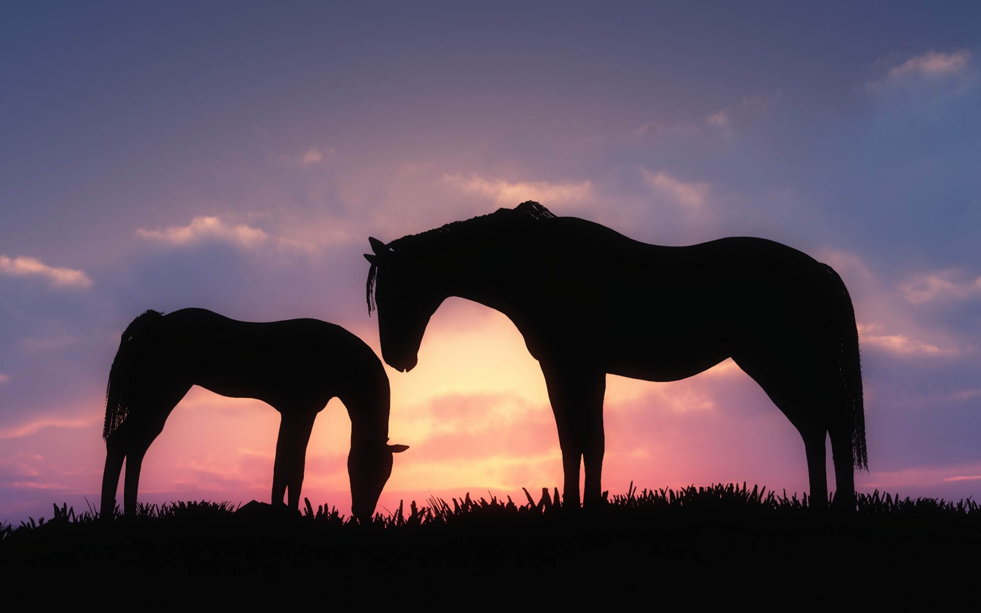 Dos caballos - 1920x1200