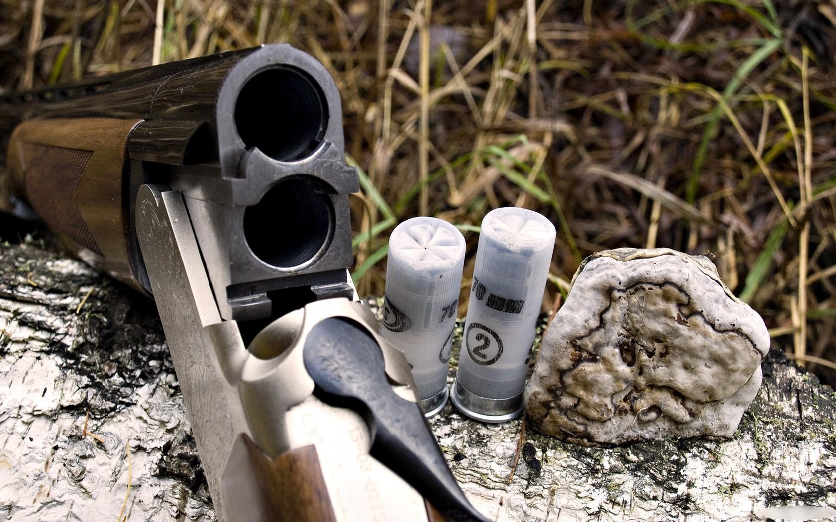 Escopeta y cartuchos - 1680x1050