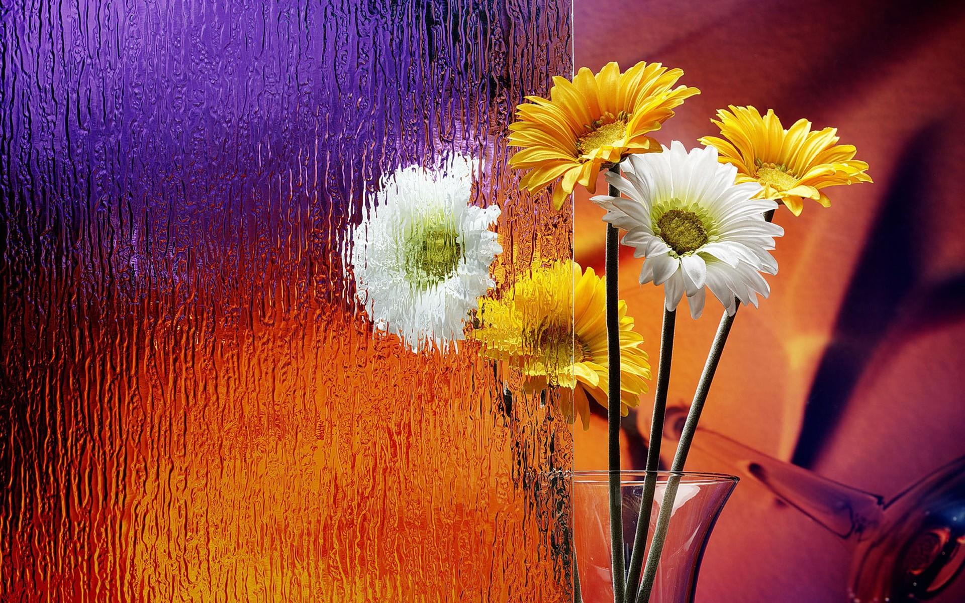 Flores en el escritorio - 1920x1200