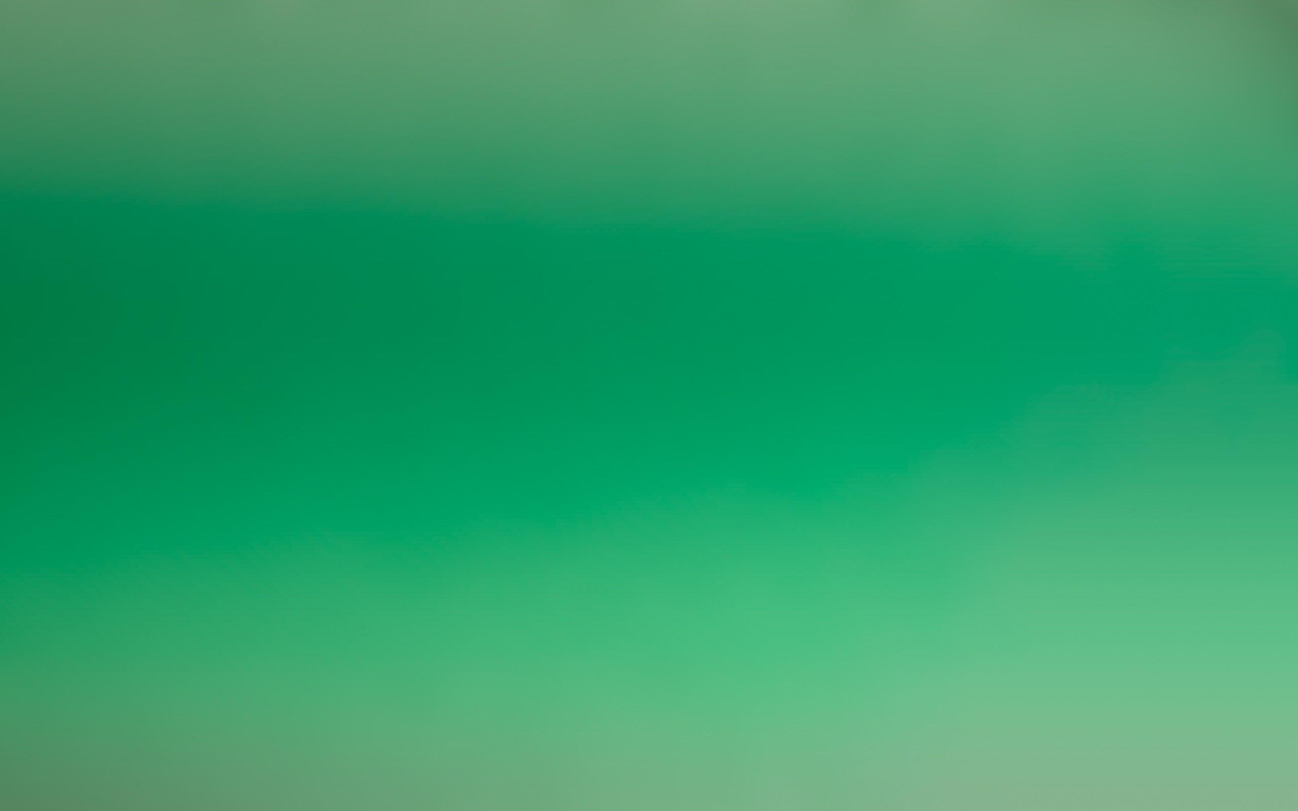 Fondo color verde - 2560x1600