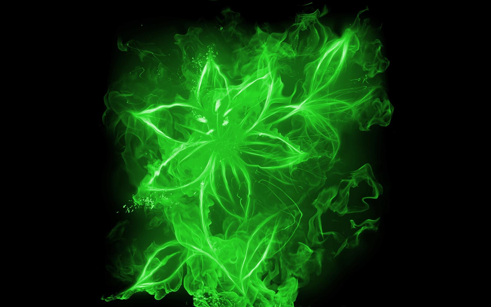 Fondo negro y flores verdes 3D - 1680x1050