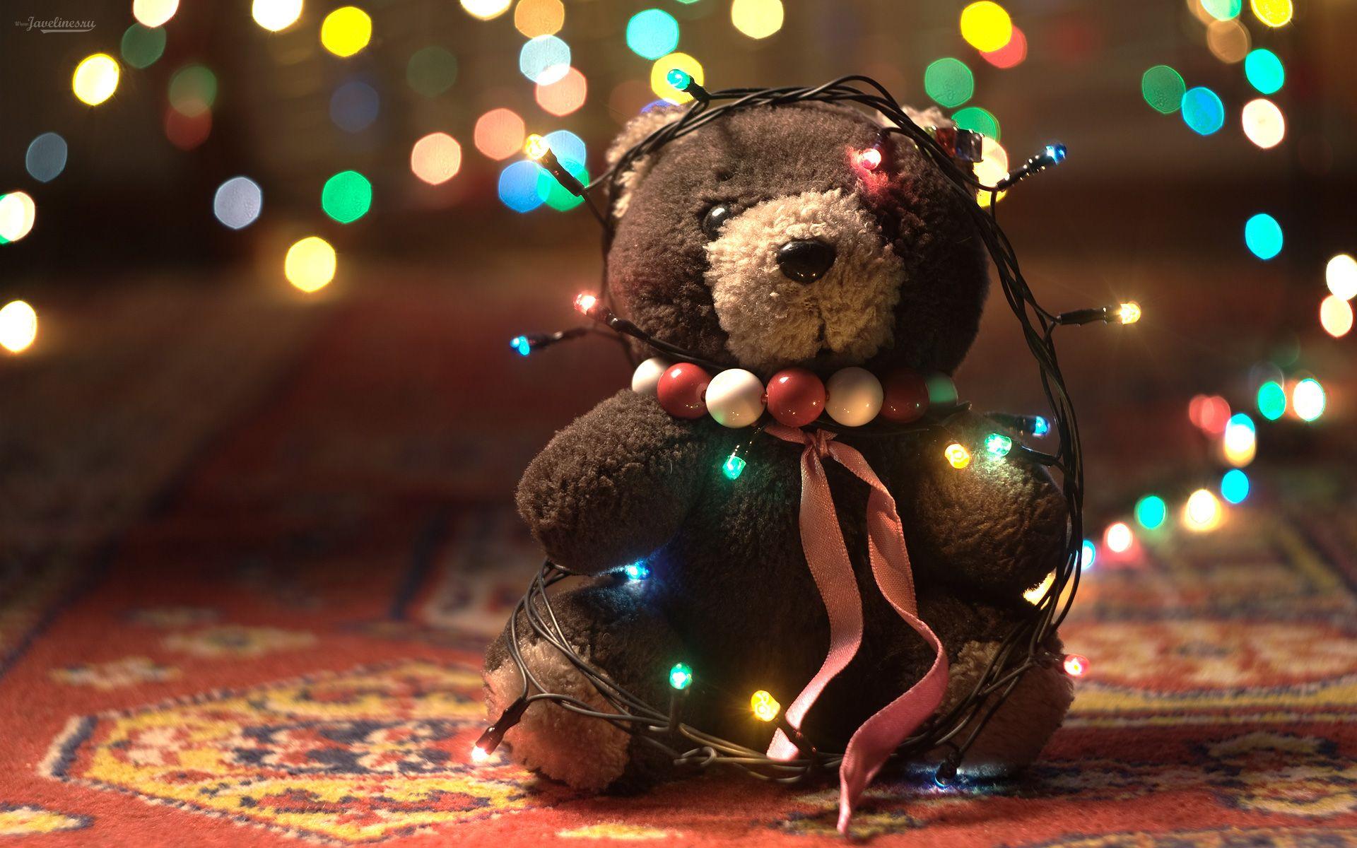 Osito y luces de navidad - 1920x1200