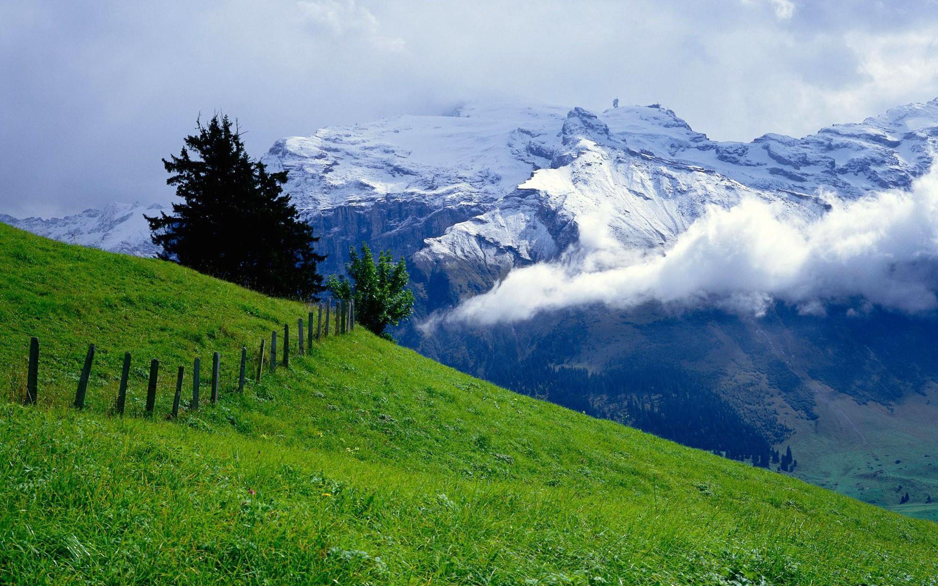 Paisaje verde y montañas - 1920x1200