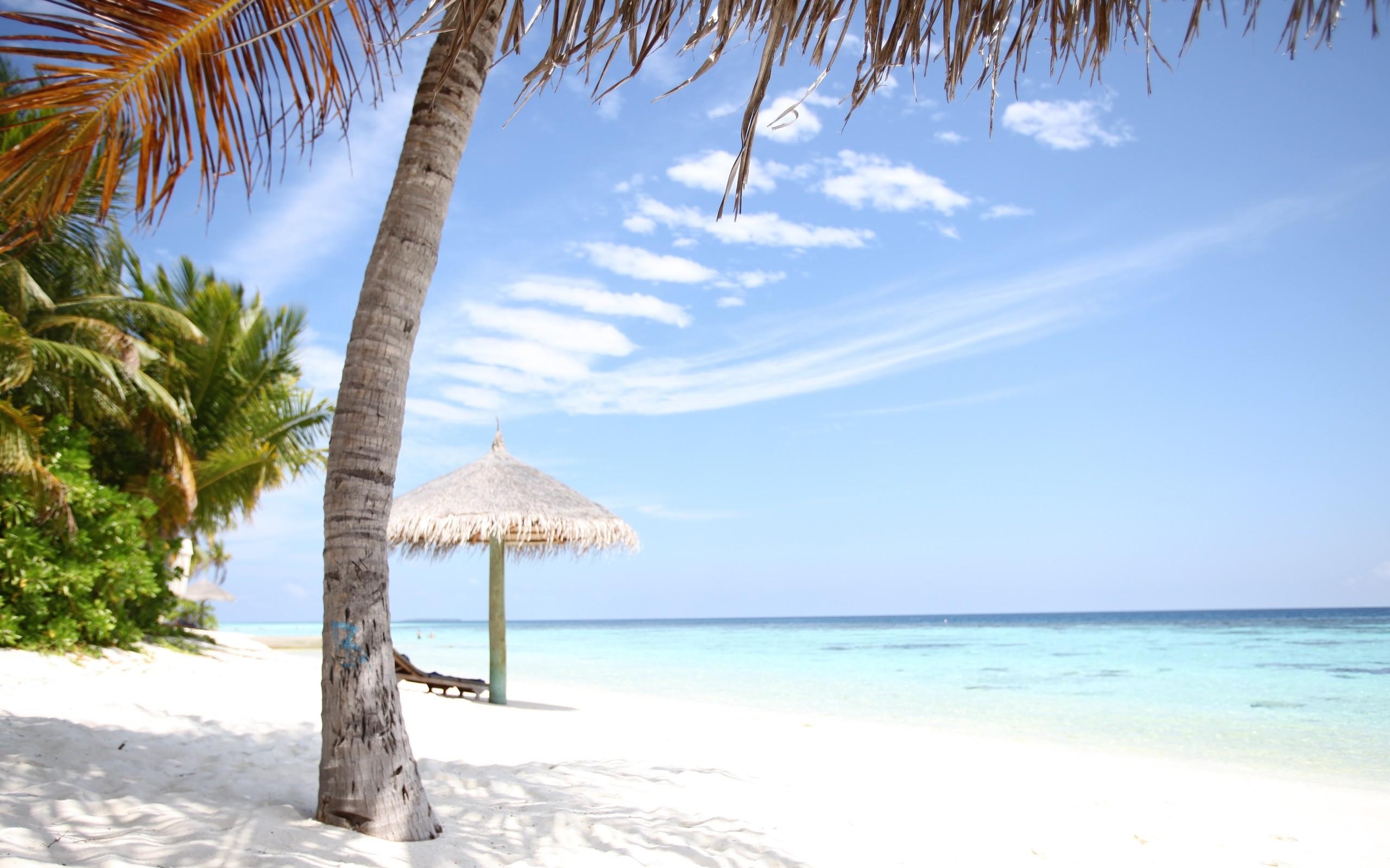 Playa del Caribe - 2560x1600