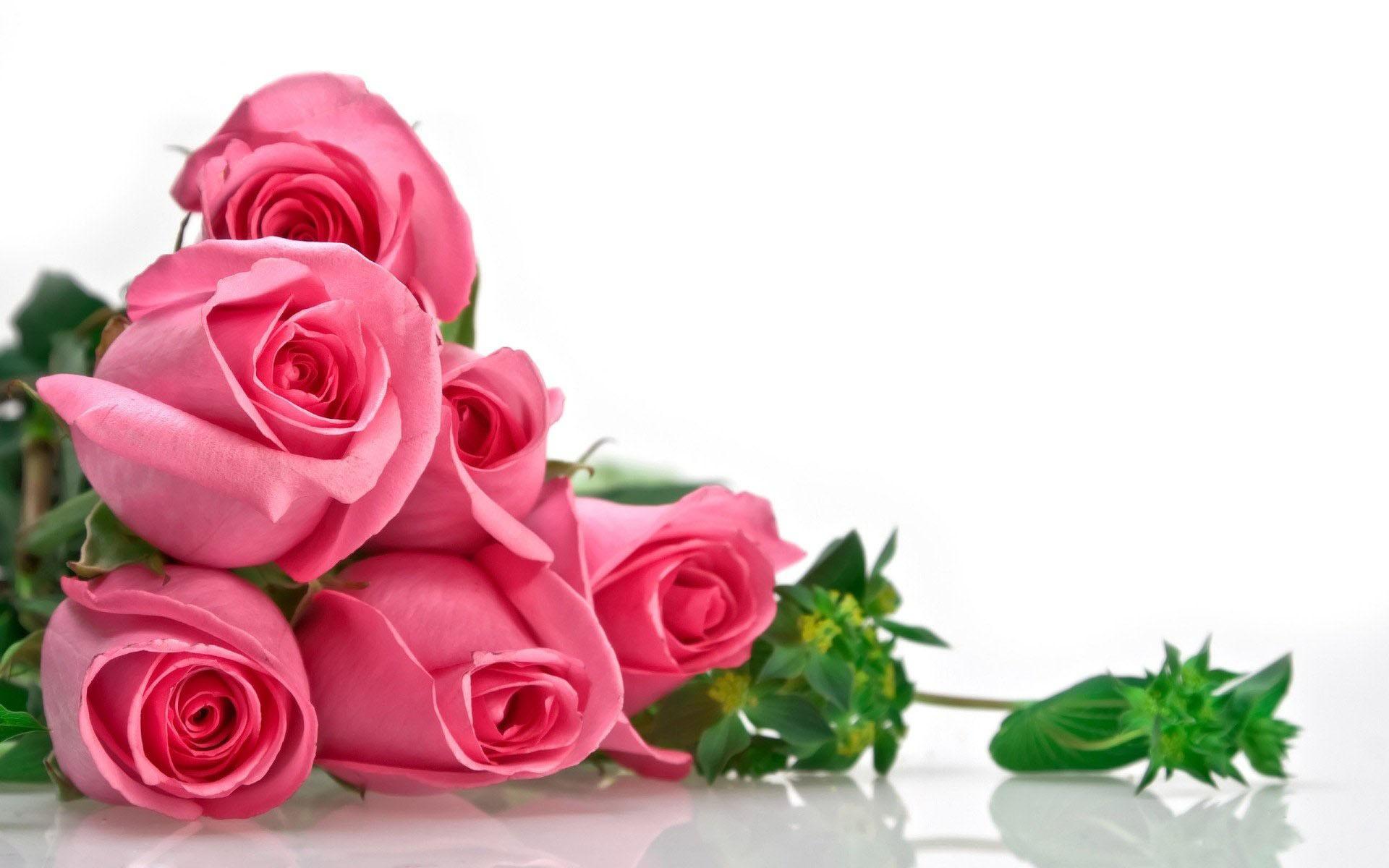 Ramo de rosas rosadas - 1920x1200
