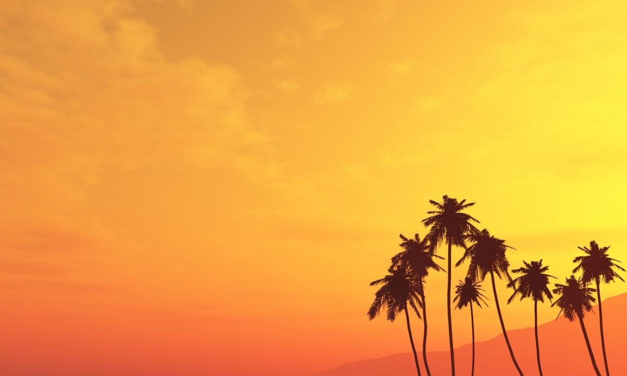 Atardecer con palmeras - 1280x768