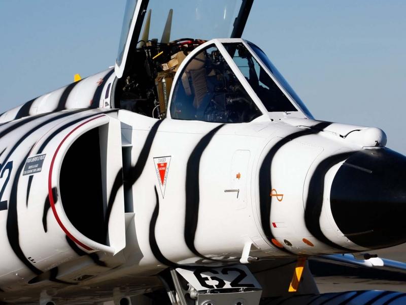 Avión pintado como cebra - 800x600