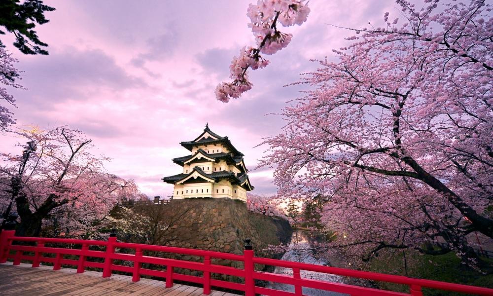 Castillo Japonés - 1000x600