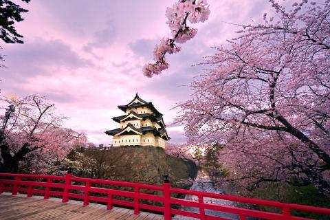 Castillo Japonés - 480x320