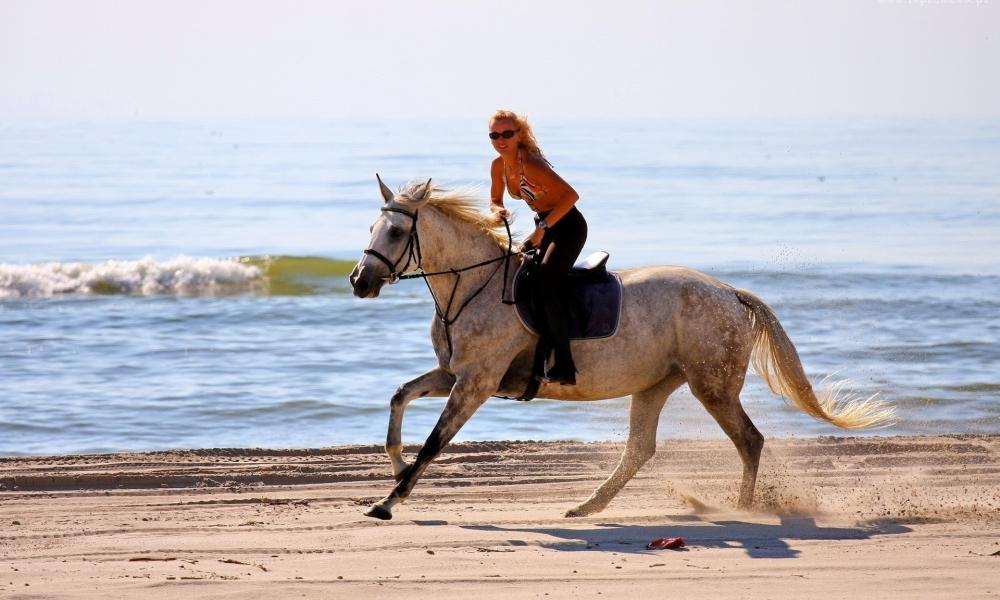 Chica paseando a caballo - 1000x600
