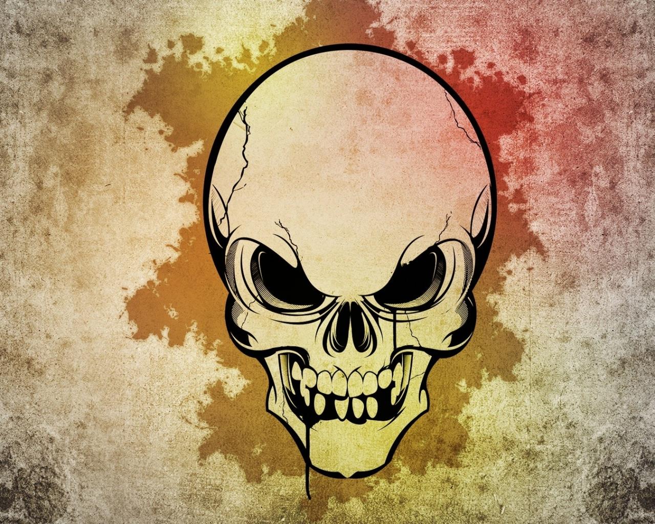 Cráneo - 1280x1024