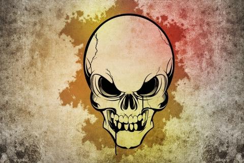 Cráneo - 480x320
