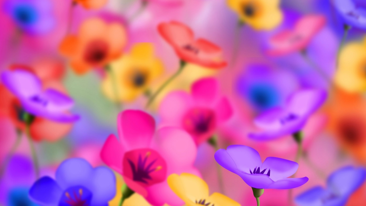 Flores artificiales de colores - 1280x720