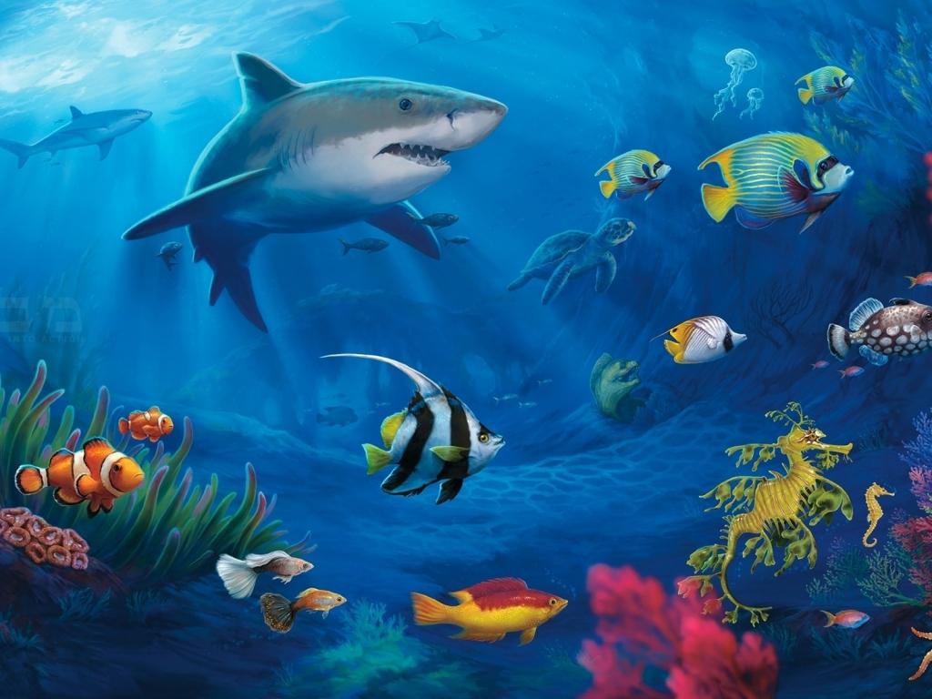 Los animales marinos - 1024x768