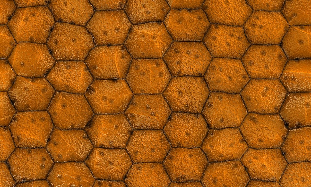 Textura con poligonos - 1280x768