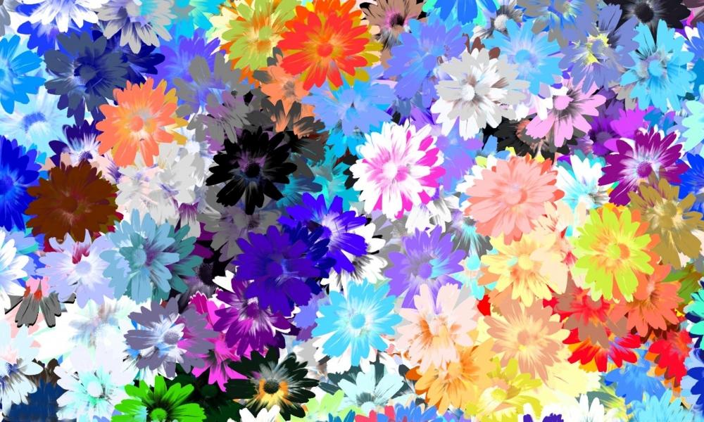 Textura de flores - 1000x600