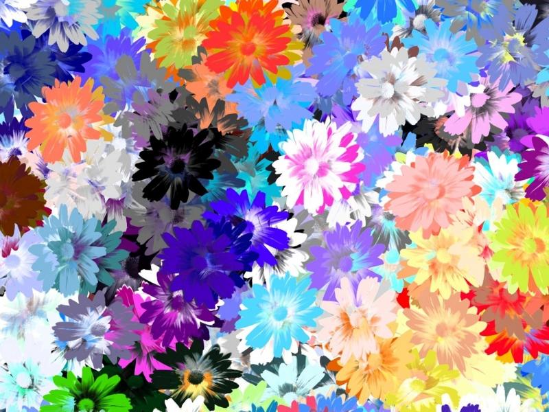 Textura de flores - 800x600