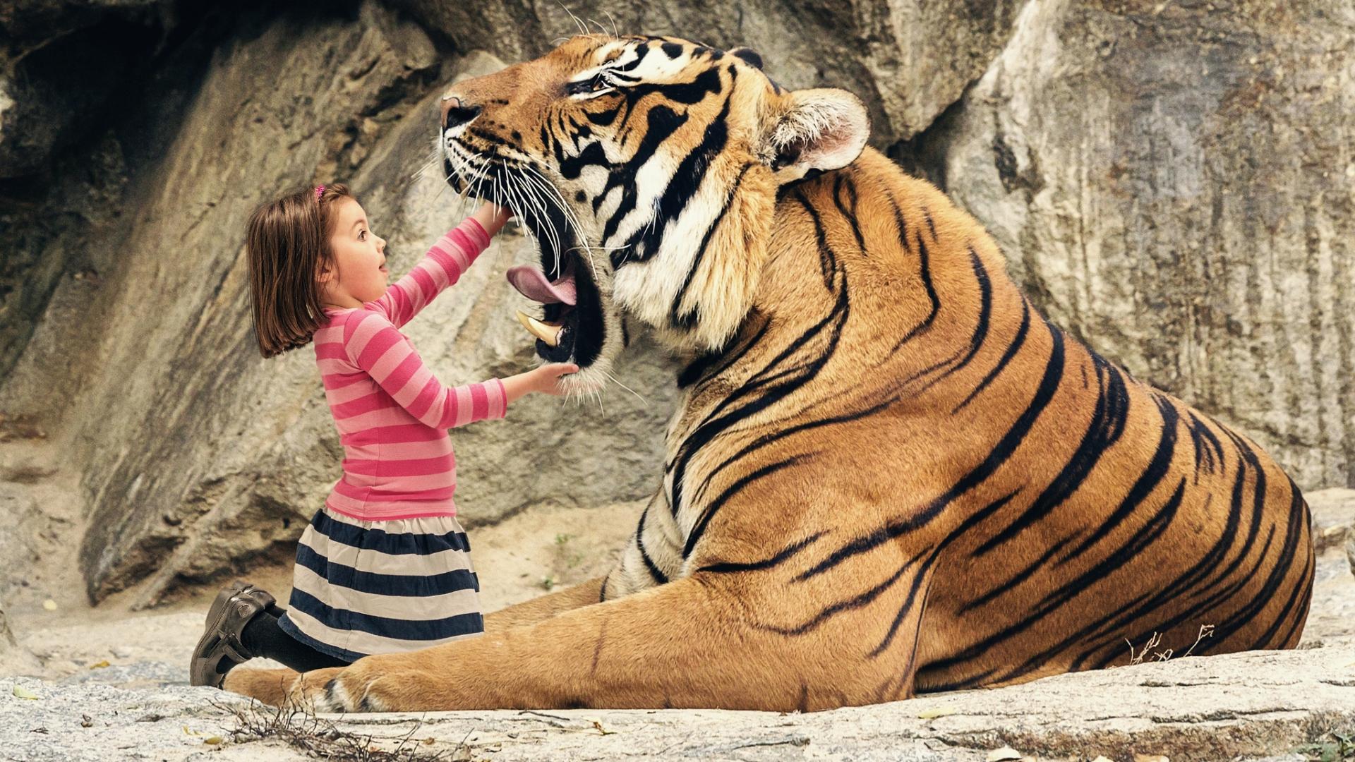 Tigre con boca abierta - 1920x1080