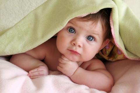 Un lindo bebe - 480x320