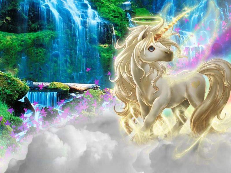 Dibujo de un unicornio - 800x600