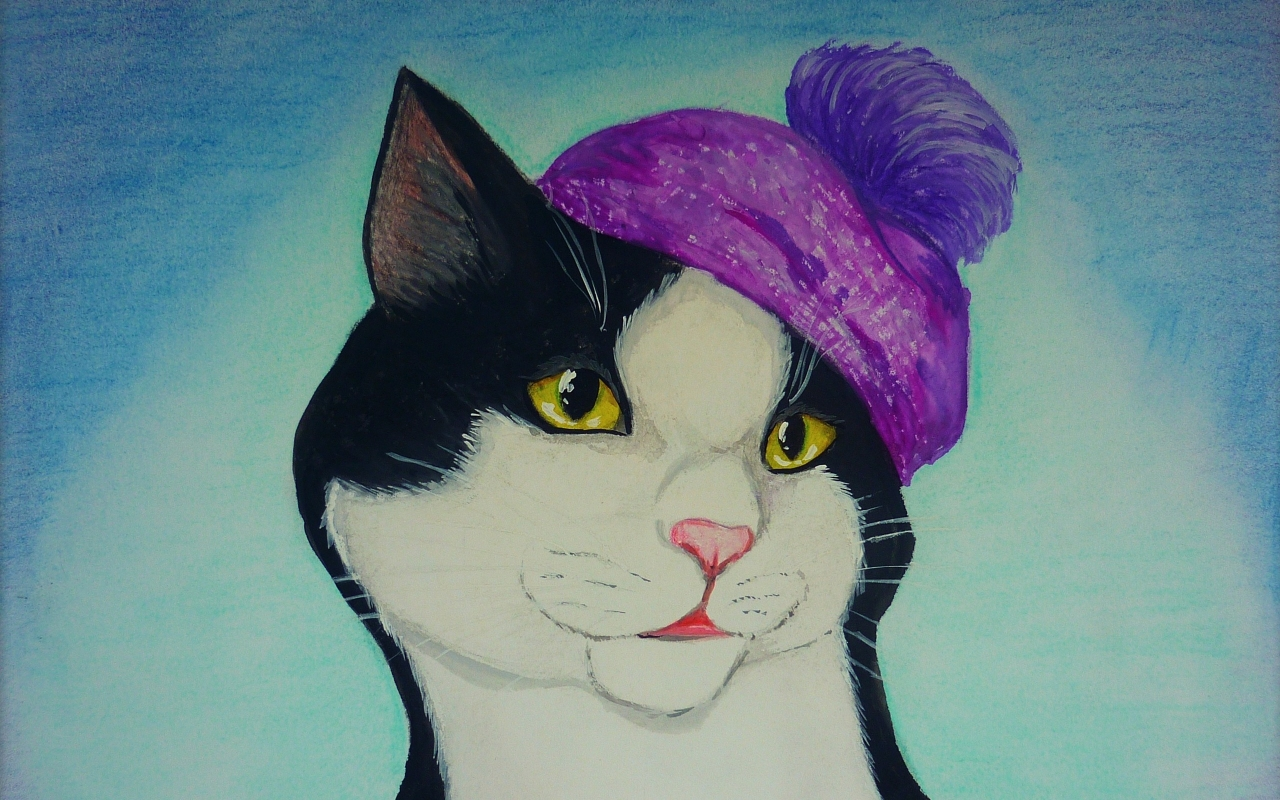 Dibujo y pintura de un gato - 1280x800