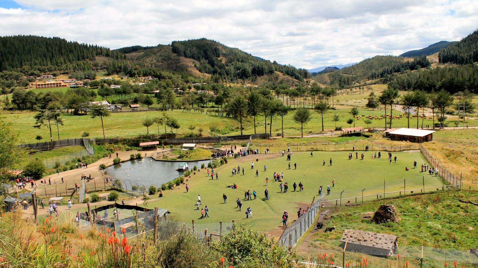 Granja Porcón en Cajamarca - 1600x900