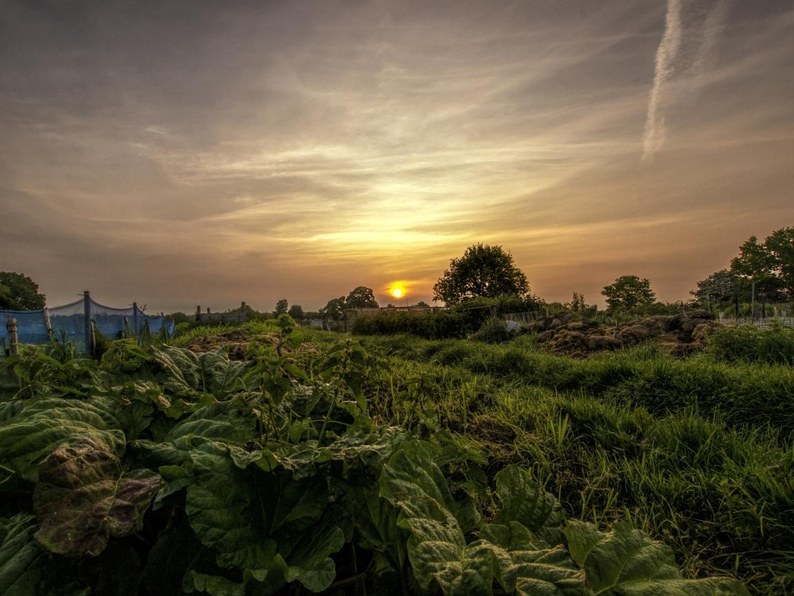 Puesta de sol en el campo - 1152x864