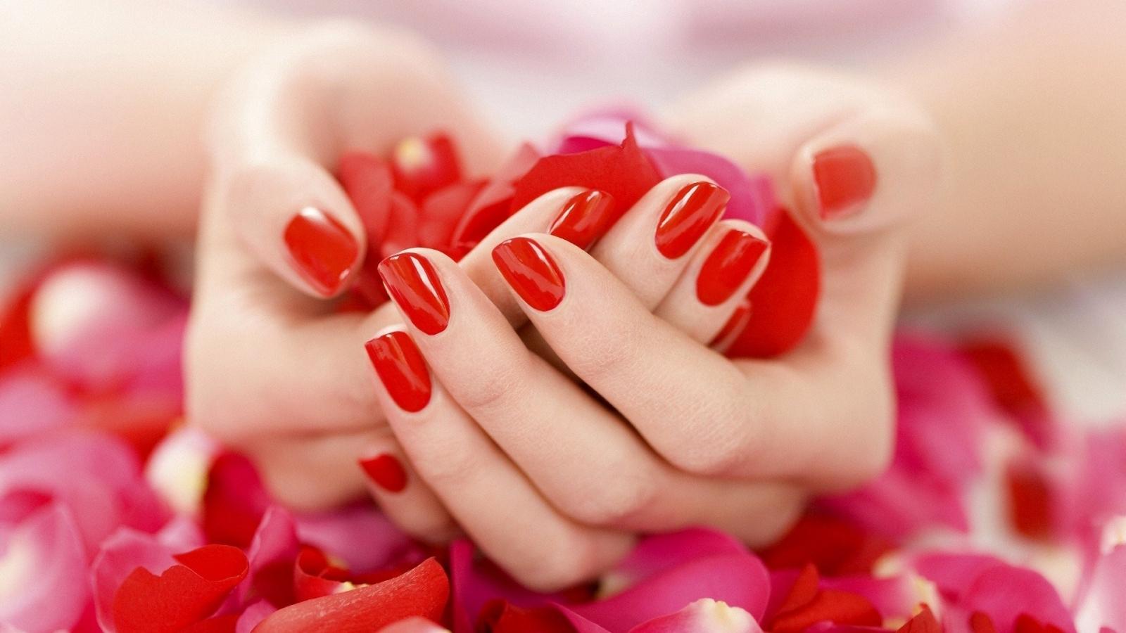 Uñas rojas y pétalos de rosas - 1600x900